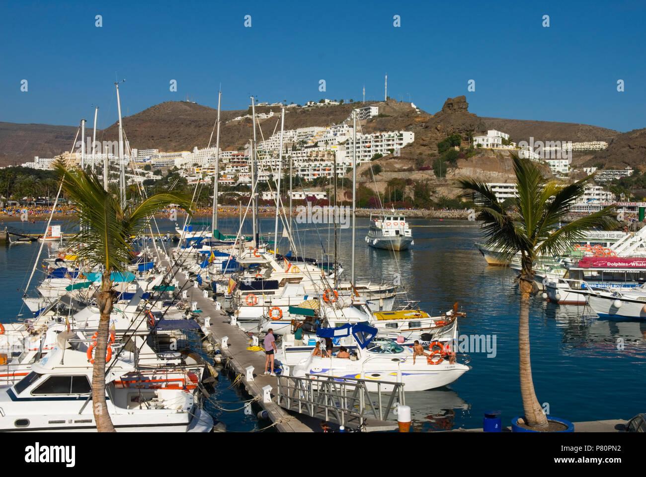 Spanien - Kanarische Inseln - Gran Canaria - Puerto Rico - Blick auf die Marina Stockfoto