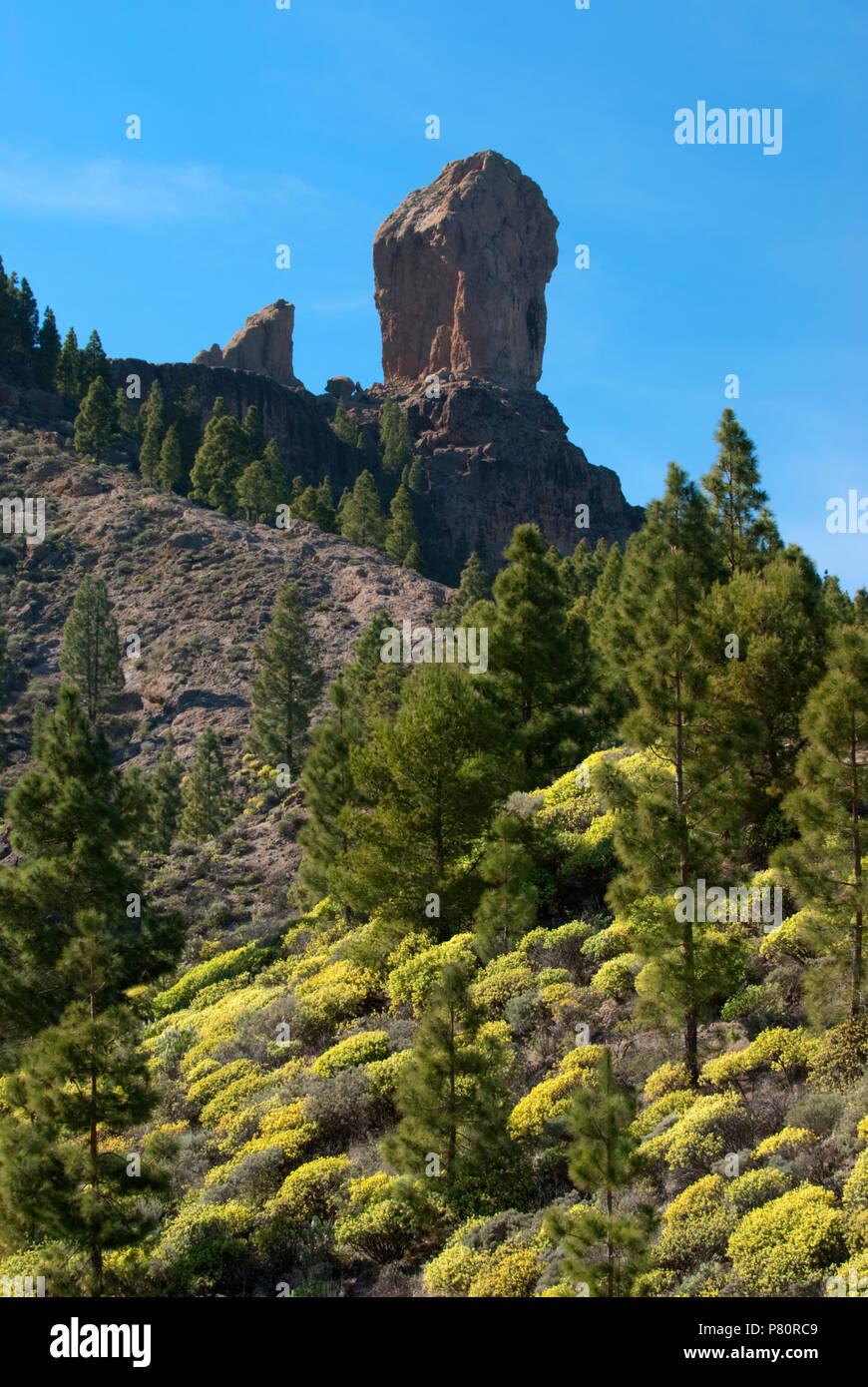 Roque Nublo in der Mitte der Insel Gran Canaria. Stockbild