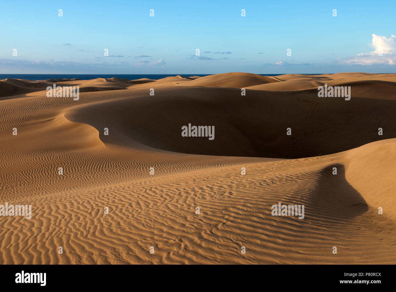 Dünen von Maspalomas, Gran Canaria, Kanarische Inseln, Spanien Stockfoto
