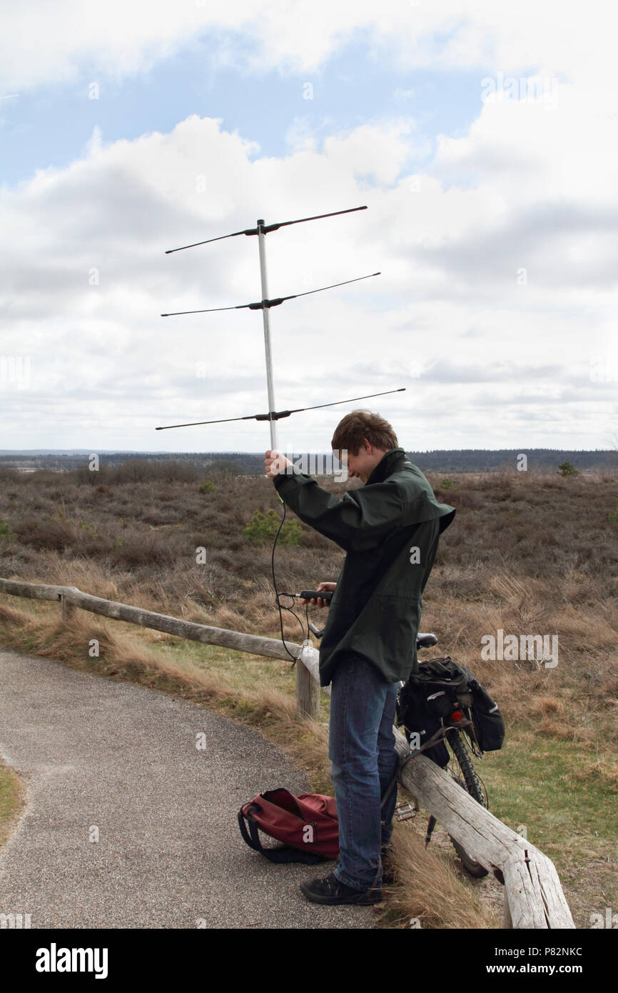Mann houdt Antenne in Lucht om te Korhoenders traceren; Mann mit Antenne für das Tracking Birkhahn Stockbild