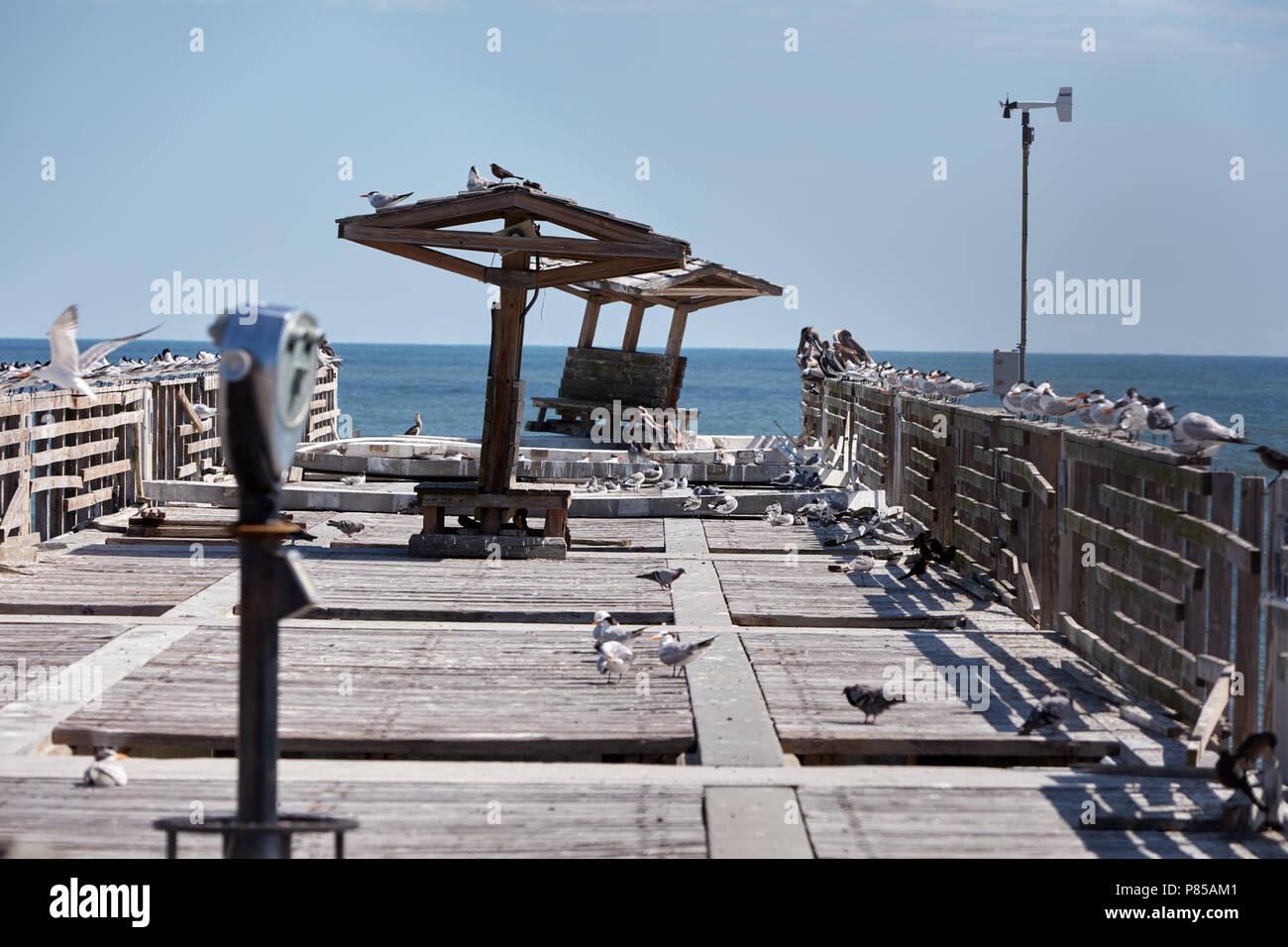 Pier durch den Hurrikan Irma in Jacksonville Beach, Florida beschädigt Stockbild