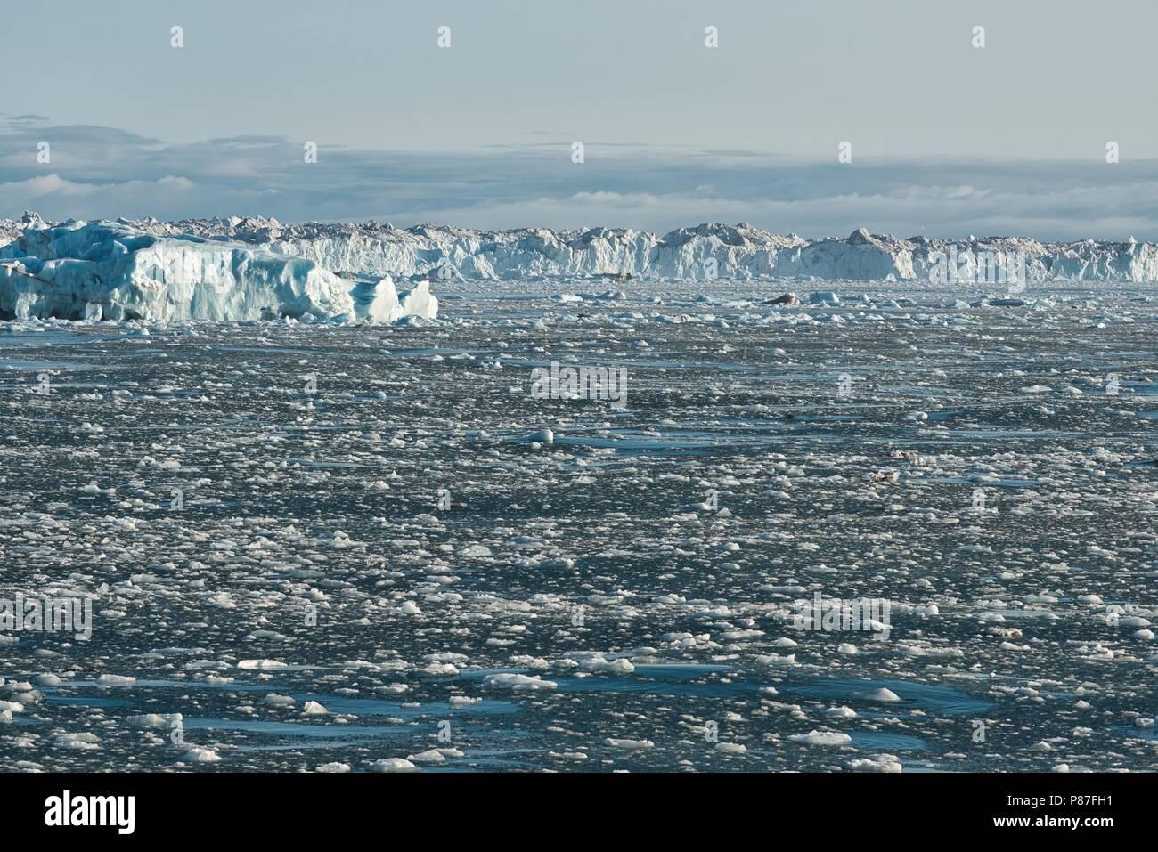Rand der arktischen Eiskappe Austfonna, Nordaustlandet, Svalbard, 2017 Stockbild