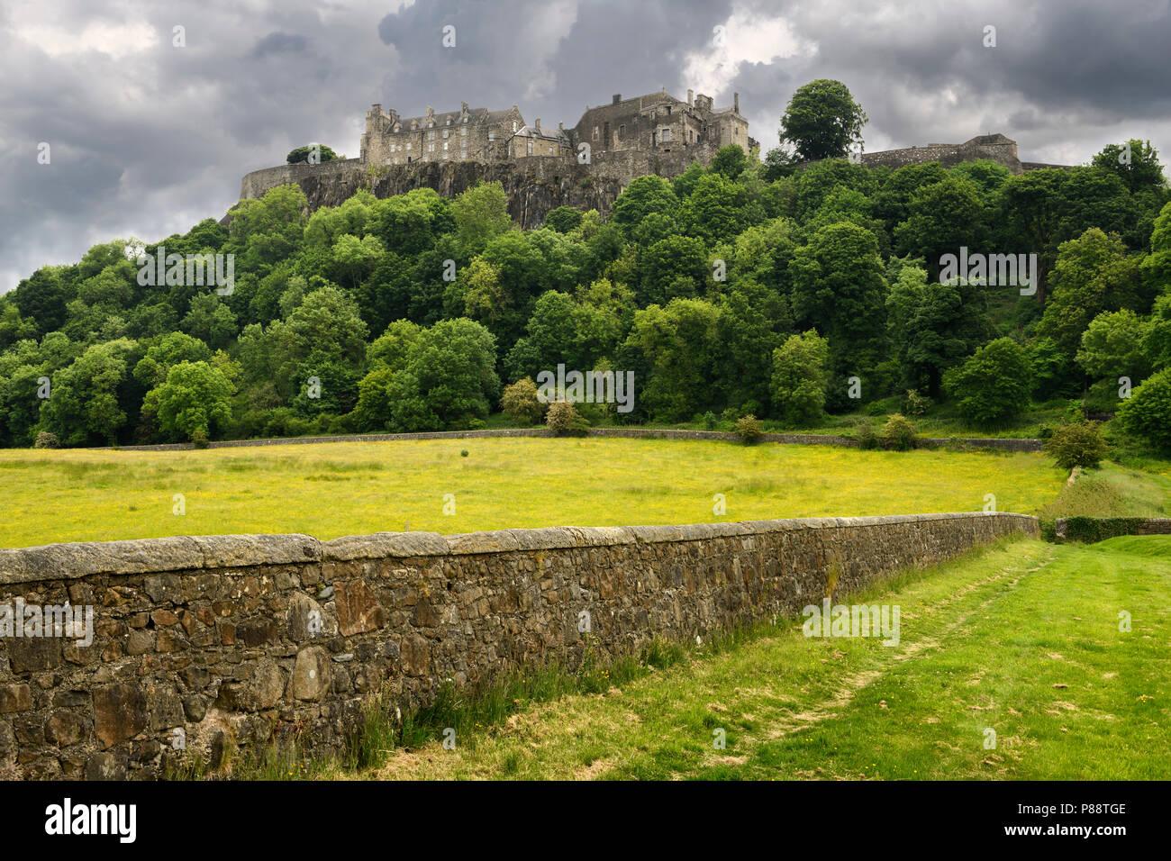 Stirling Castle auf der Klippe Castle Hill in Stirling Schottland mit Steinmauer von Schafen auf der Weide mit dunklen Wolken Stockfoto