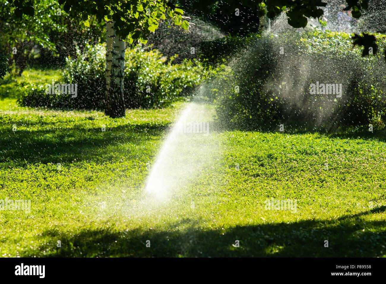 Automatische Bewasserung Sprinkleranlage Im Garten An Einem Heissen