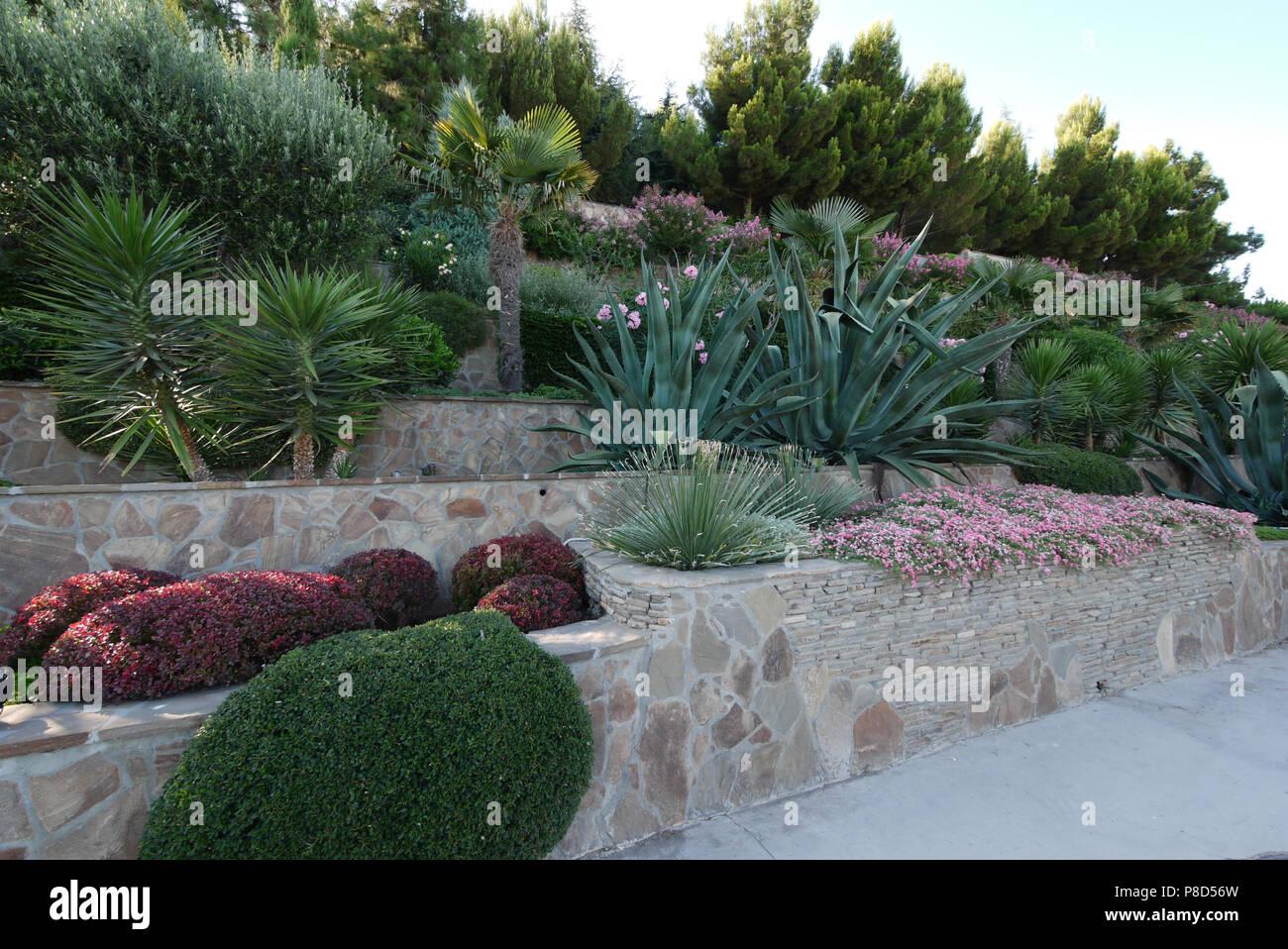 Schöne Yukki, Palmen, Blumen und andere Sträucher sind harmonisch in die Landschaft des Parks kombiniert. . Für ihr Design Stockbild