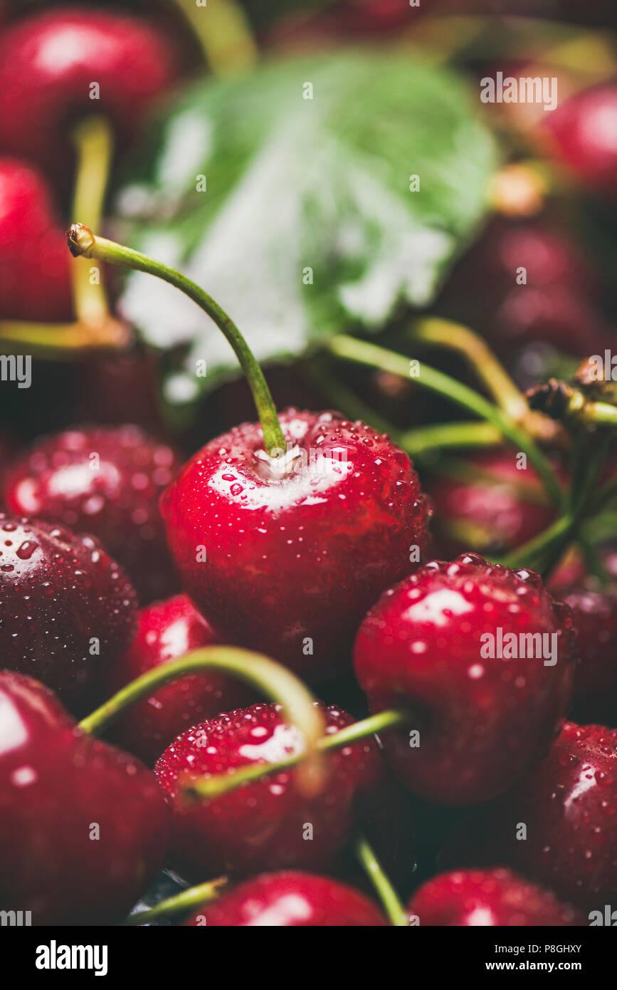 Frische süße Kirsche Textur, Tapeten und Hintergrund. Nasse süsse Kirschen mit Blättern, selektiver Fokus, Nahaufnahme, vertikale Komposition. Sommer essen oder Stockbild
