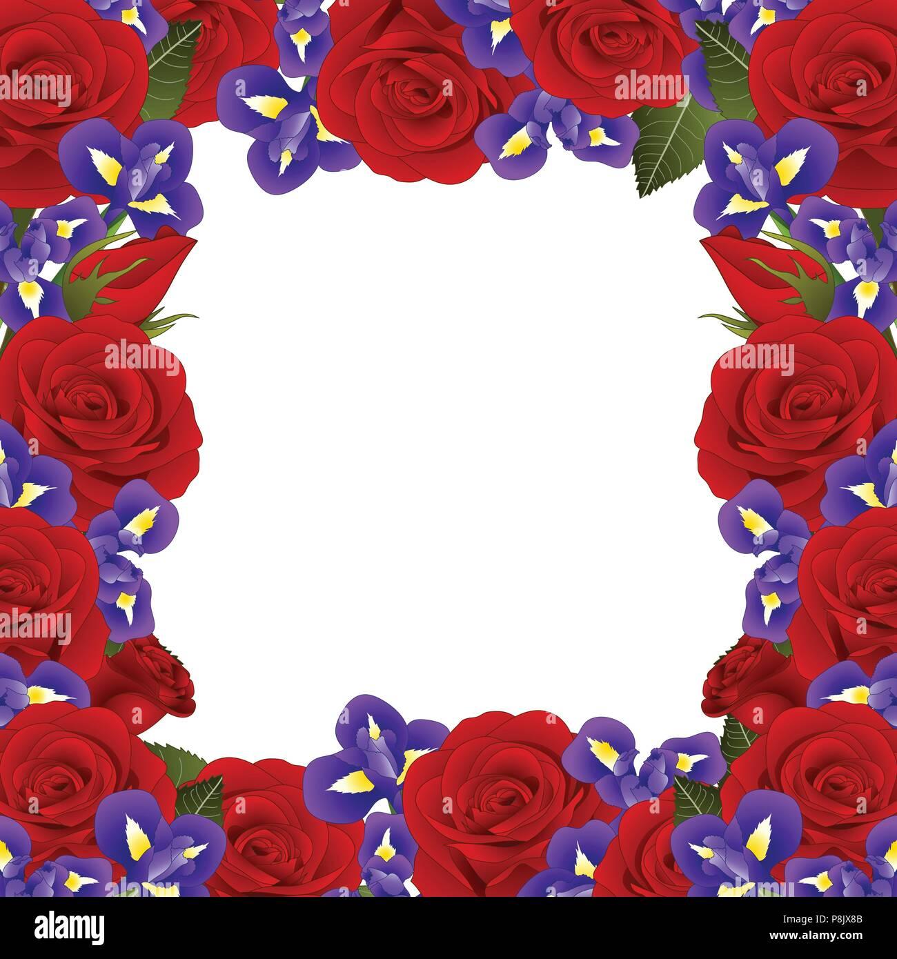 Rote Rose und Iris Blume Rahmen Grenze. auf weißem Hintergrund ...