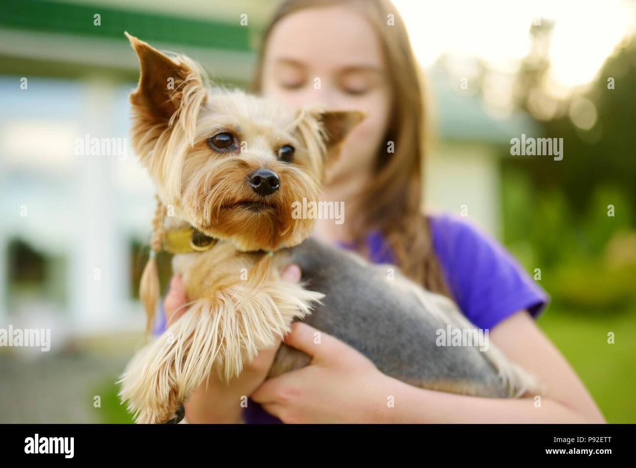 Susse Kleine Madchen Ihre Lustige Yorkshire Terrier Hund Halten