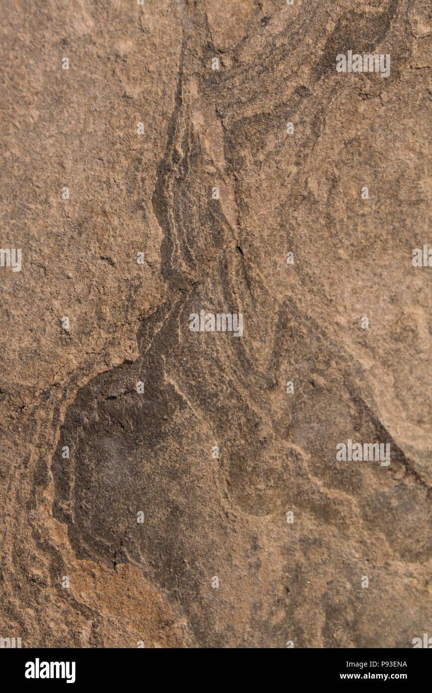 Stein Textur Oberfläche Der Marmor Mit Bräunlichen Farbton
