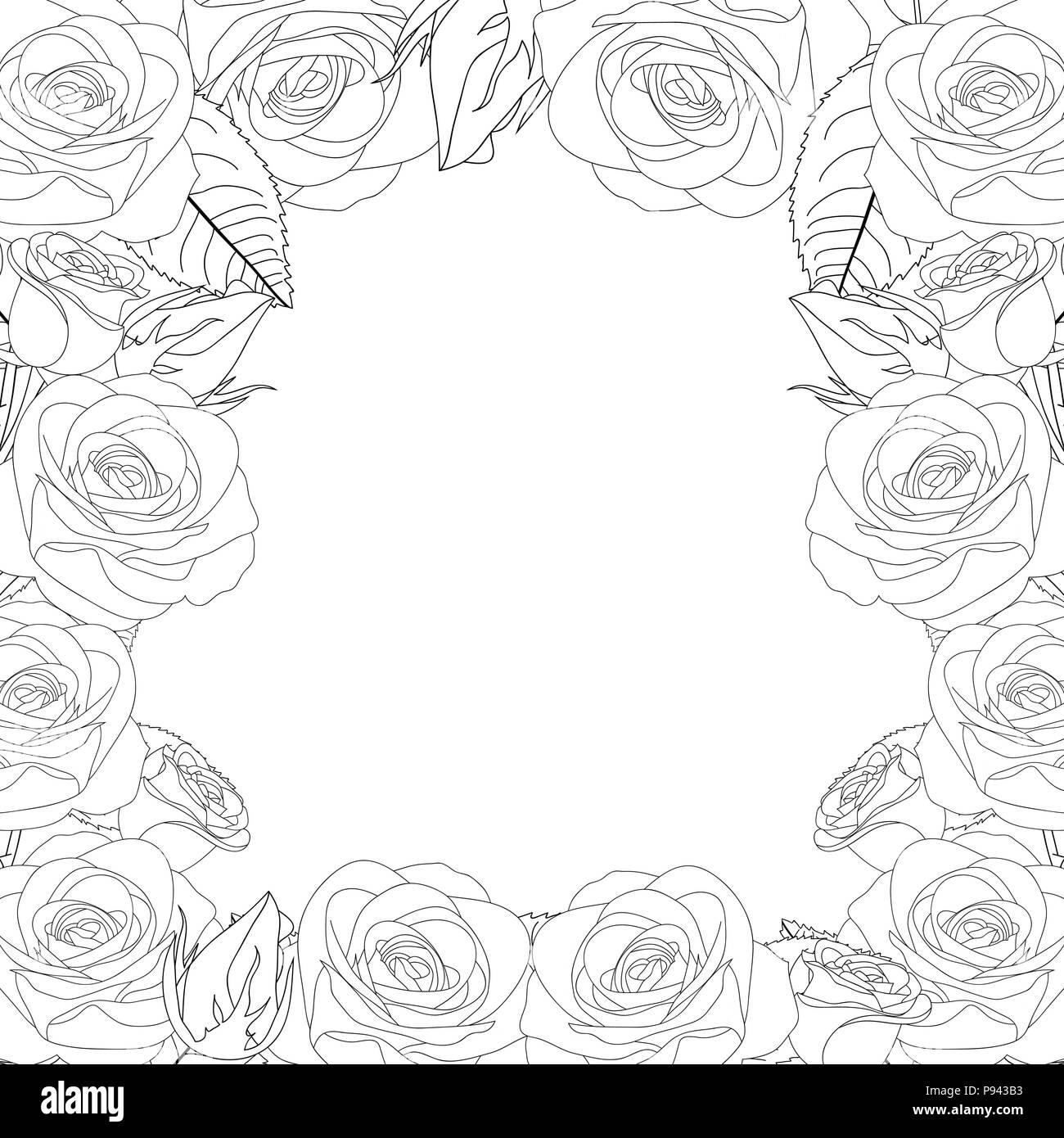 Rose Blume Rahmen Umreißrand. auf weißem Hintergrund. Vector ...