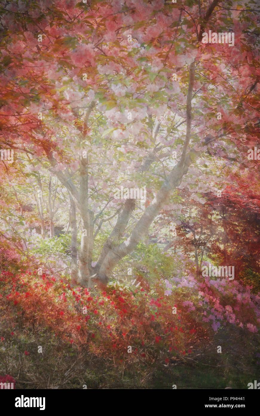 Abstrakte, wunderschön bemalte Garten Szene mit Baum, bemalten Hintergrund. Stockbild