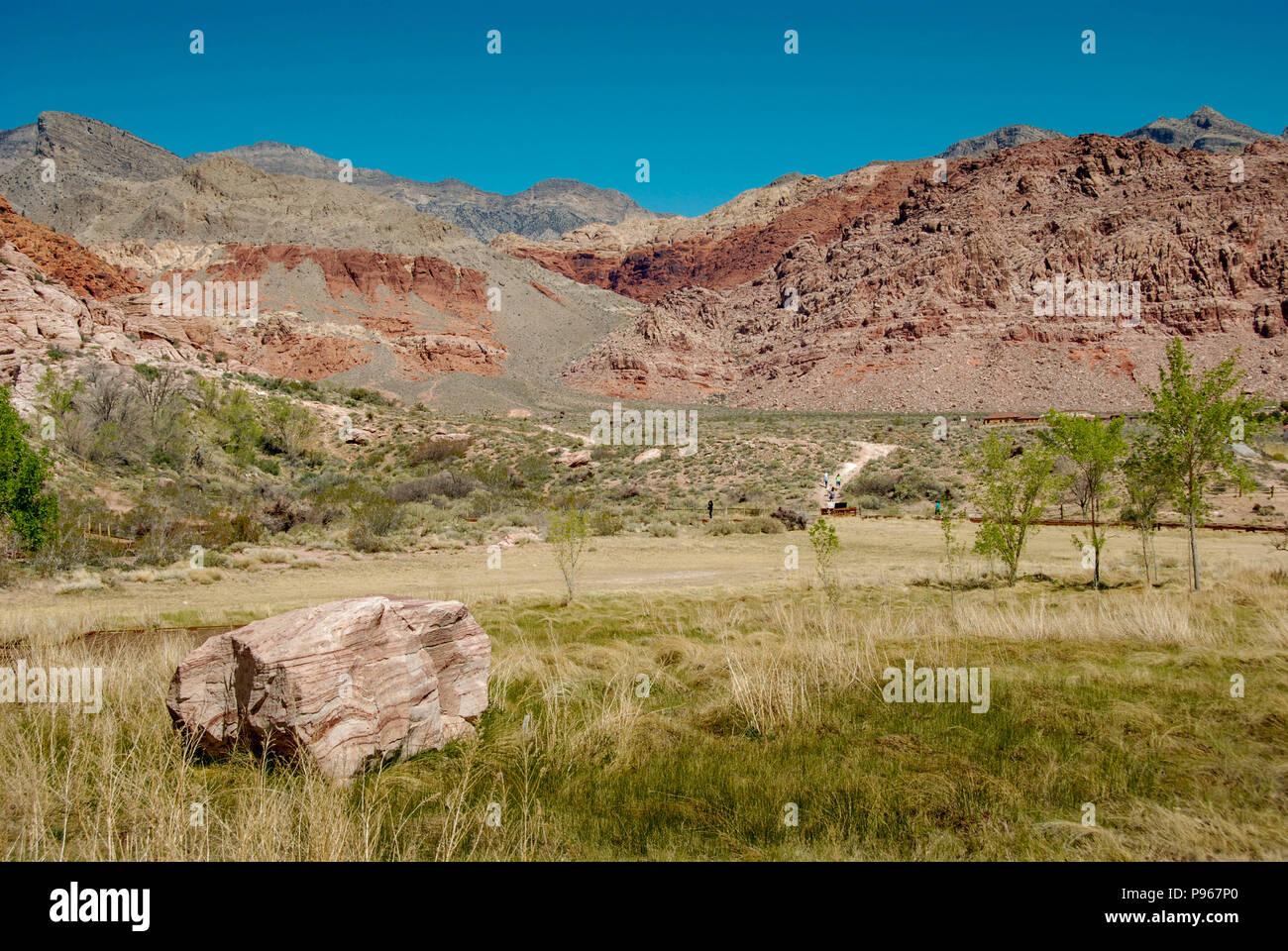 Wiesen und Berge in der Red Rock Canyon National Conservation Area am Rande von Las Vegas, Nevada. Stockfoto