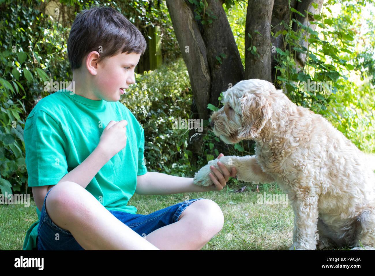 Junge Lehre Haustier Hund Tricks im Garten zu Hause Stockbild