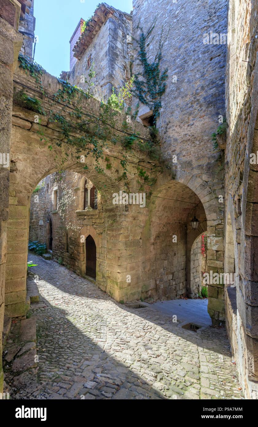 """Frankreich, Tarn-et-Garonne, Quercy, Bruniquel, """"Les Plus beaux villages de France (Schönste Dörfer Frankreichs), wenig gepflasterte Strasse in Stockbild"""