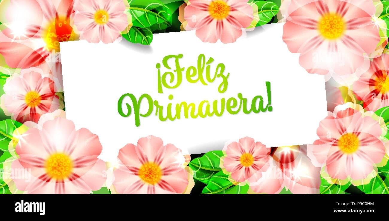 Happy Spring Flowers Hintergrund Karte Feliz Primavera Flores Vektor