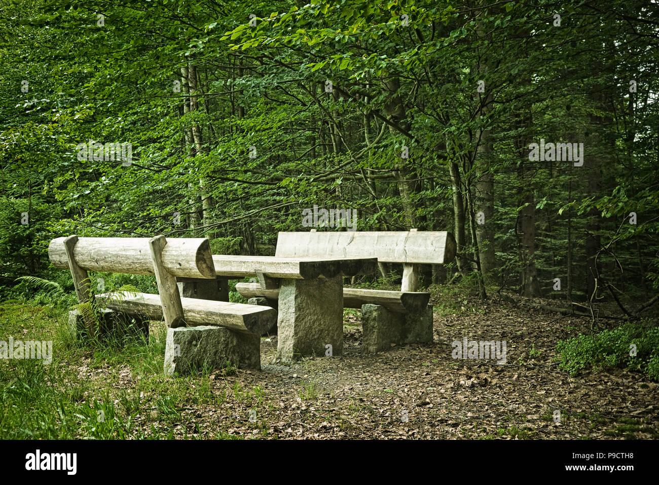 Picknick Tisch und Sitzbänke aus Baumstämmen in einem Wald, Bayern, Deutschland, Europa Stockfoto