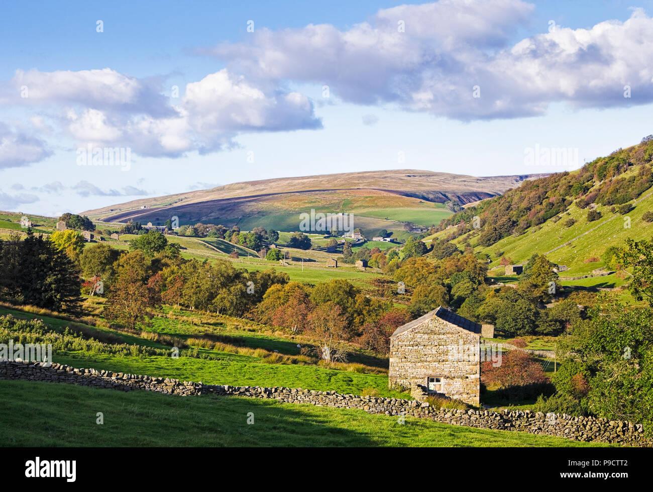 Die schöne englische Landschaft Landschaft von swaledale in den Yorkshire Dales National Park, England Großbritannien Stockfoto