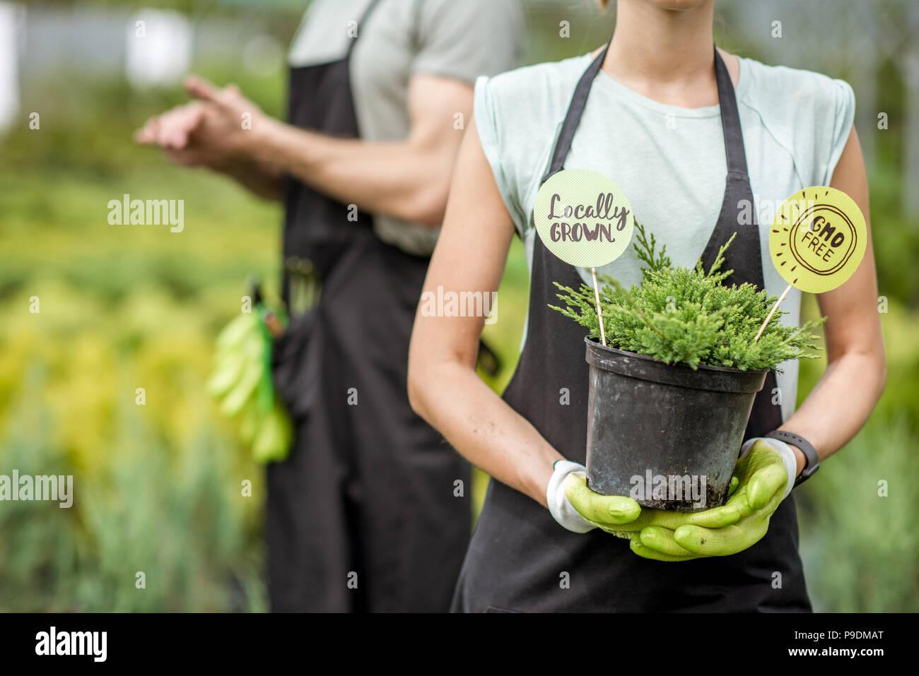 Blumentopf Mit Gesicht Stockfotos Blumentopf Mit Gesicht Bilder