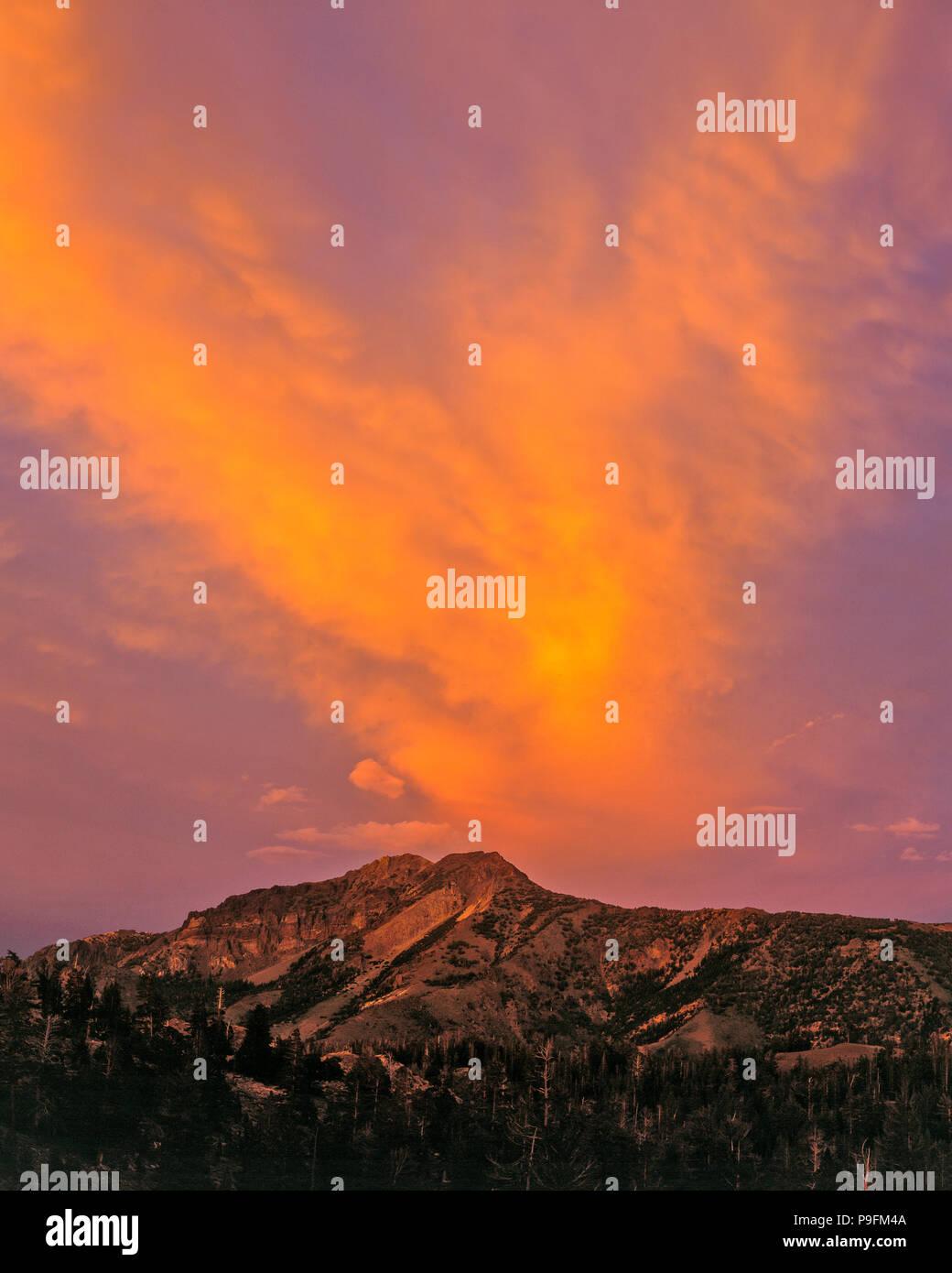 Sonnenuntergang, Silver Peak, Carson-Iceberg Wüste, Stanislaus National Forest, Sierra Nevada, Kalifornien Stockbild