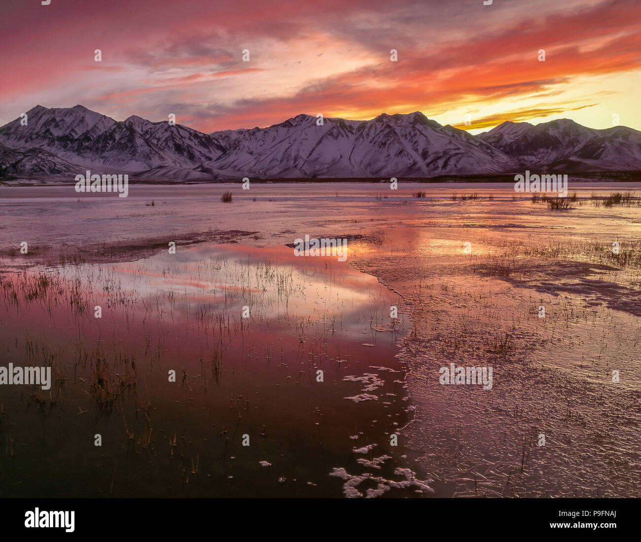 Sonnenuntergang, Crowley Lake, Inyo National Forest, östlichen Sierra, Kalifornien Stockbild