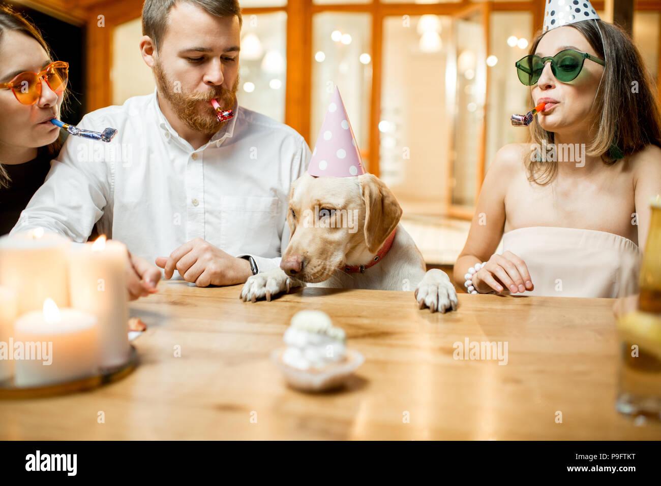 Freunde feiern Geburtstag des Hundes Stockbild