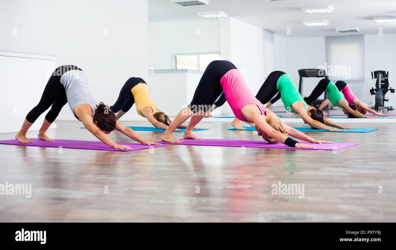 Vier Mädchen üben Yoga, svanasana/Nach unten schauender Hund darstellen Stockbild