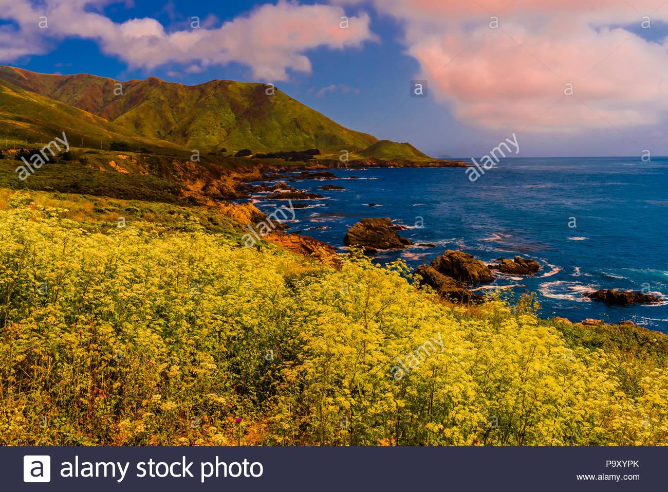Blick entlang der Autobahn einen auf Big Sur Küste zwischen Carmel Highlands und Big Sur, Monterey County, Kalifornien, USA. Stockbild