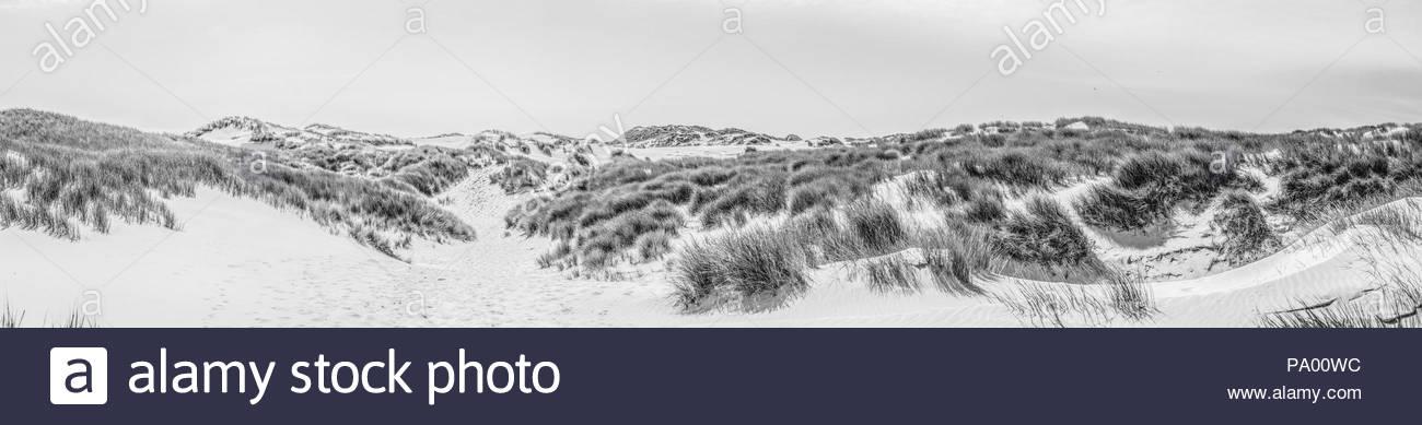 Amrum Dünen-Panorama Stockbild