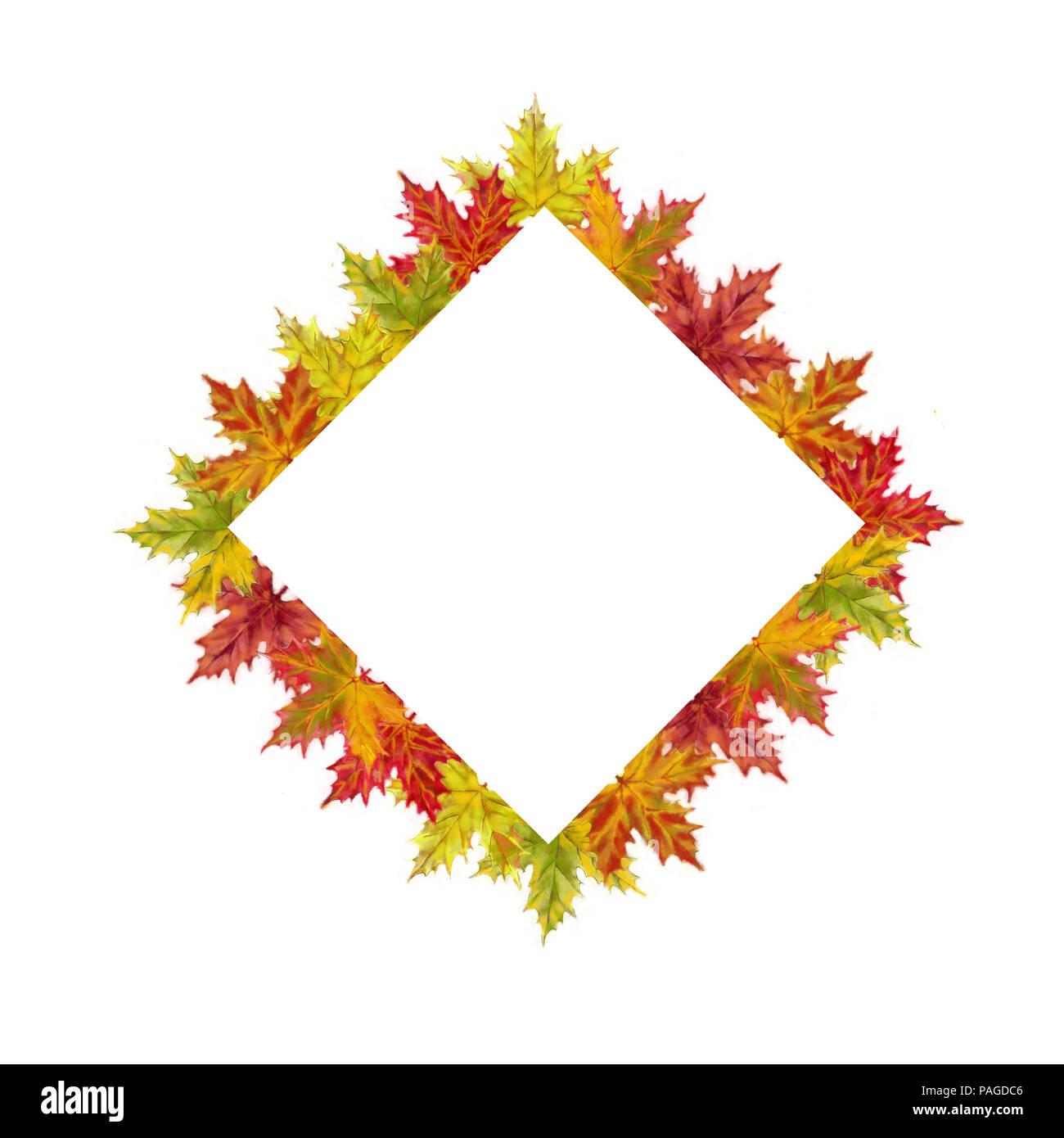 Herbst Ahorn Blätter Diamond Vorlage isoliert auf weißem Hintergrund ...