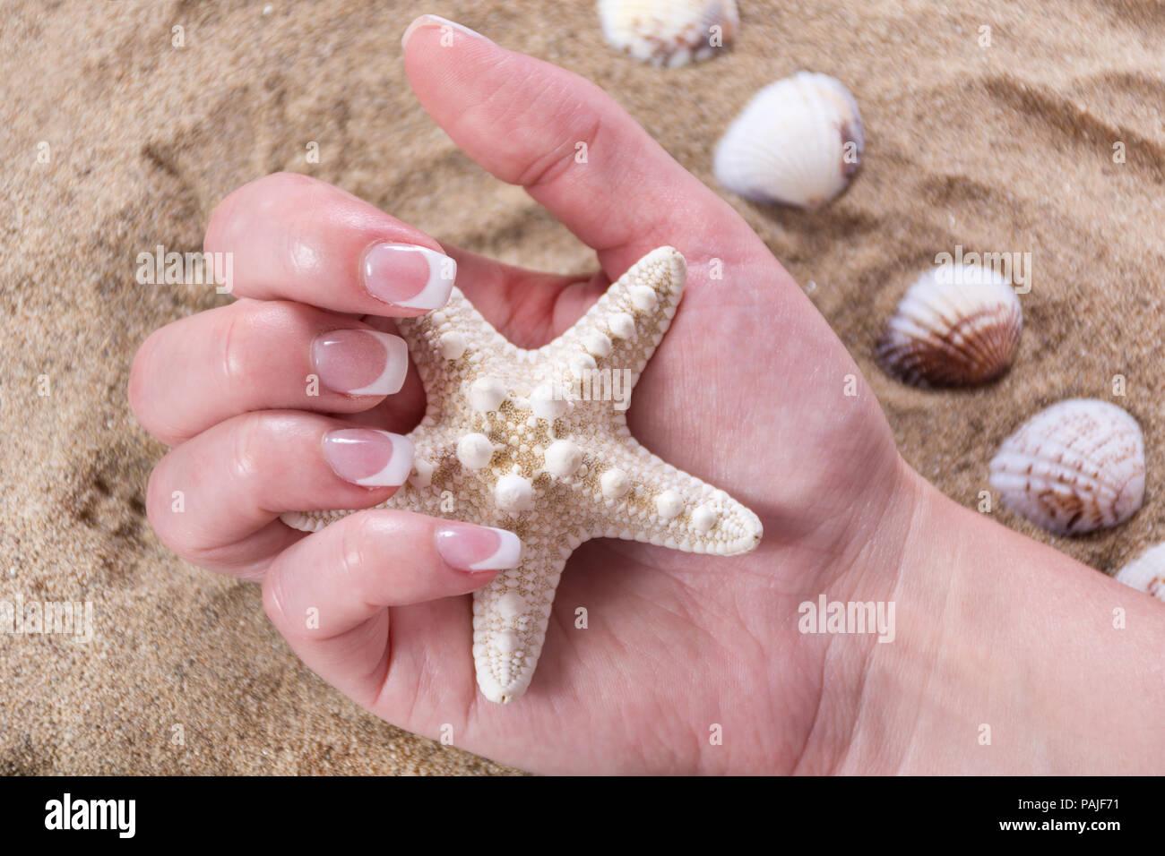 Junge Weibliche Hand Mit French Manikure Stil Auf Die Nagel Halten