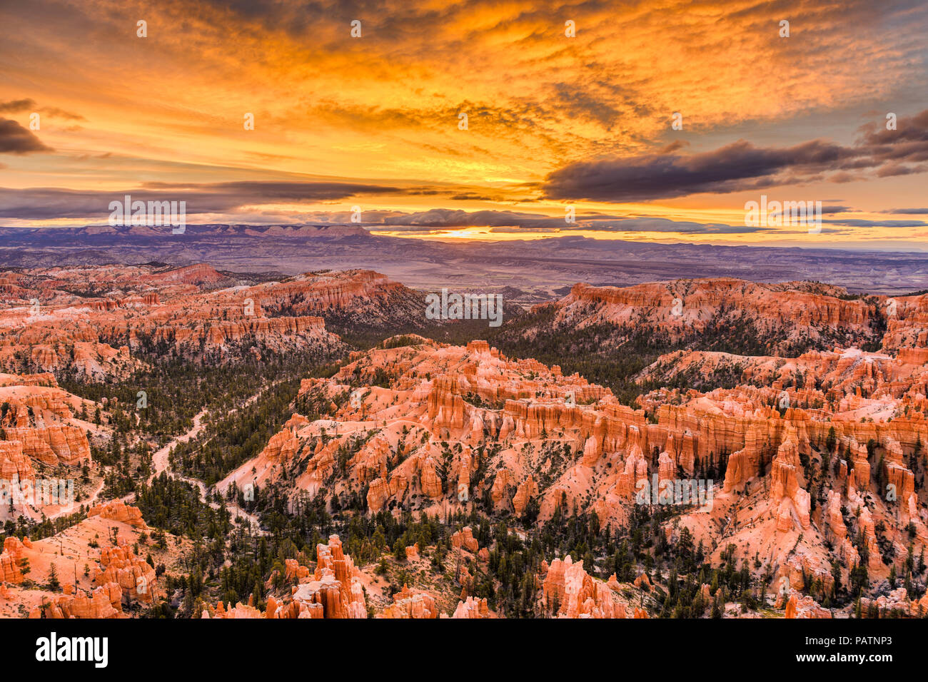 Bryce Canyon National Park, Utah, USA, in der Morgendämmerung. Stockbild