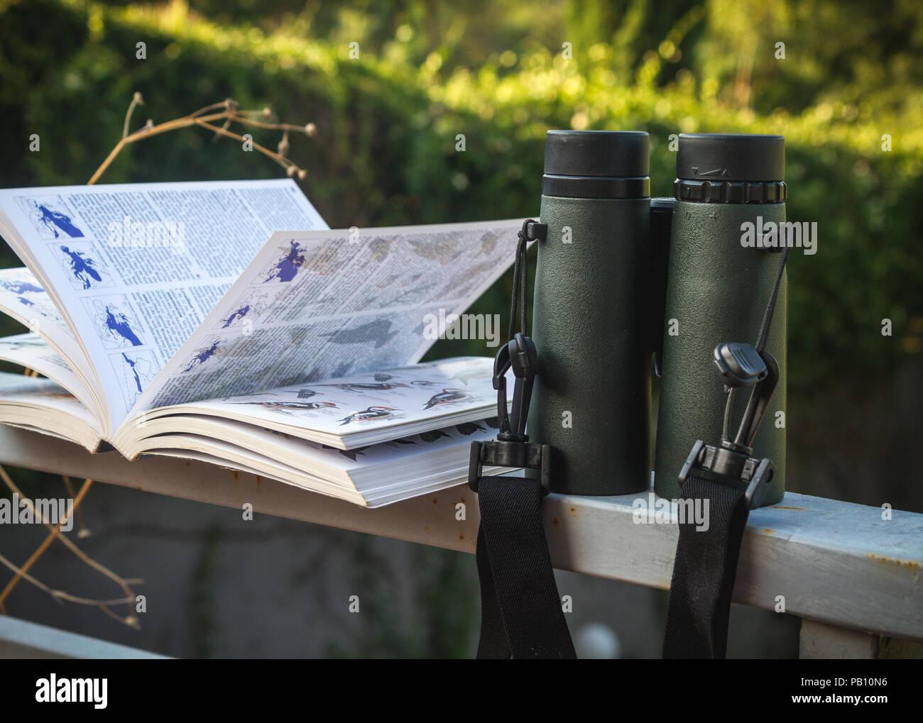 Porro prisma fernglas teleskop best buy vogelbeobachtung