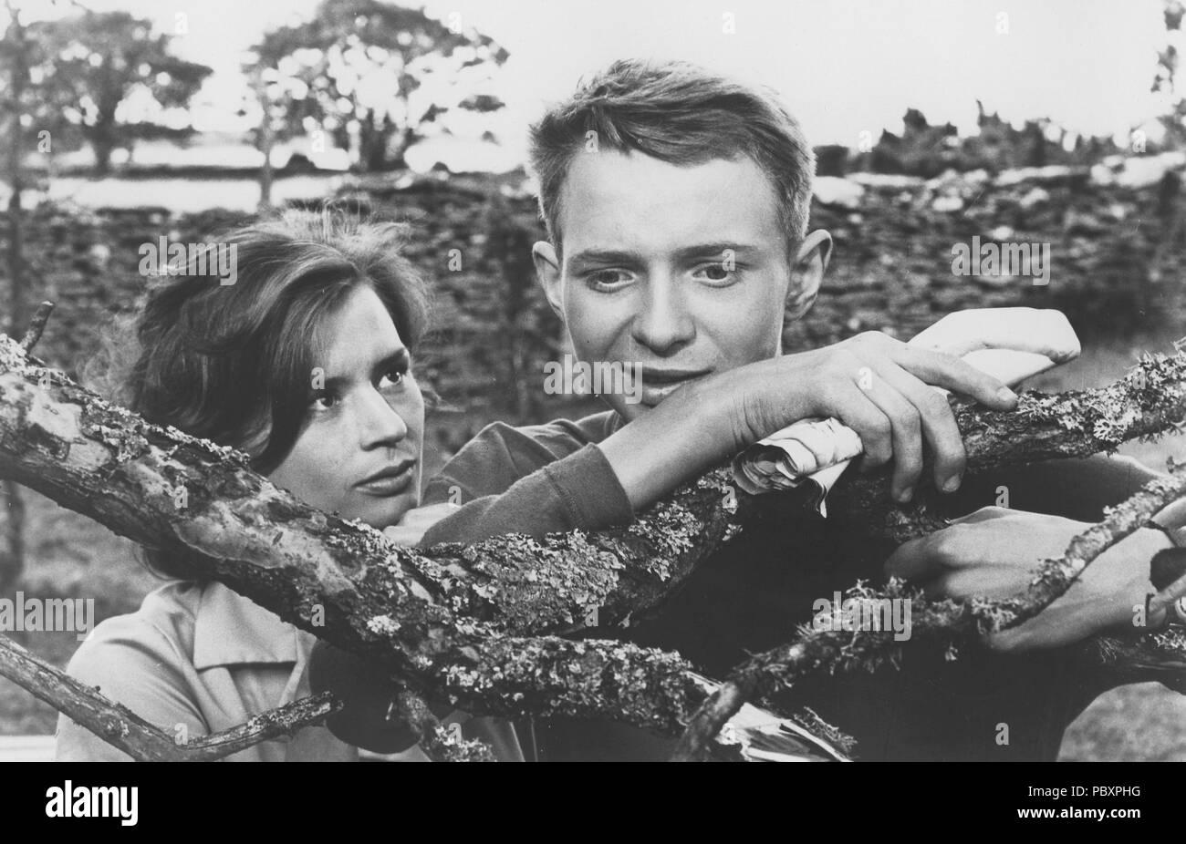 Wie in einem Spiegel. Schwedische Film von Ingmar Bergman 1961 starring Harriet Andersson und Lars Passgård. Ingmar Bergman. 1918-2007. Schwedische Filmregisseur. Stockbild