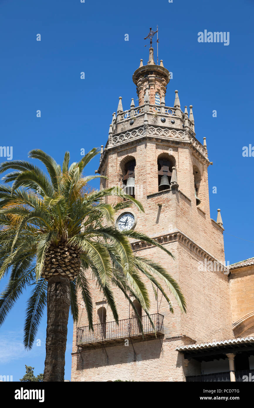 Palm Tree und Turm der Iglesia de Santa Maria la Mayor, Ronda, Andalusien, Spanien, Europa Stockbild
