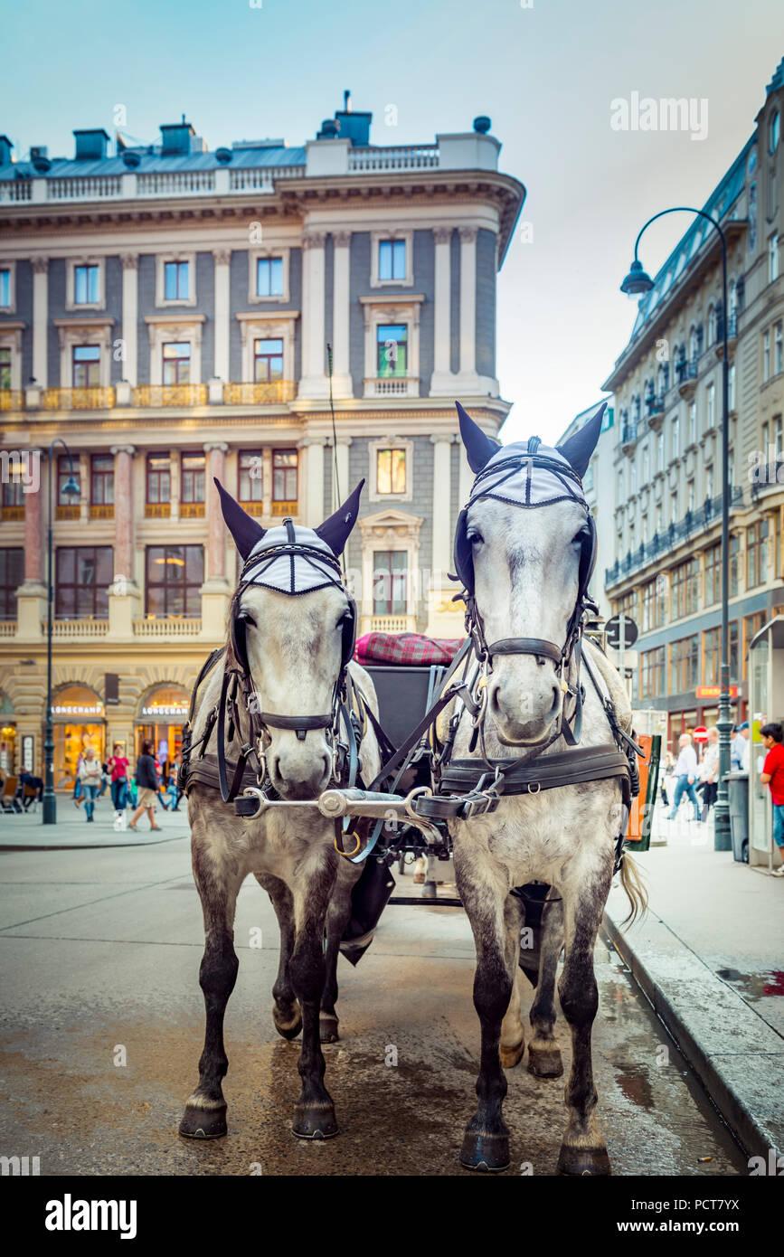 Europa, Österreich, Wien, Innere Stadt, Innenstadt, Jungferngasse, Kutschenanhänger, Fiaker, Wien, Österreich, Architektur, Kapital Stockbild