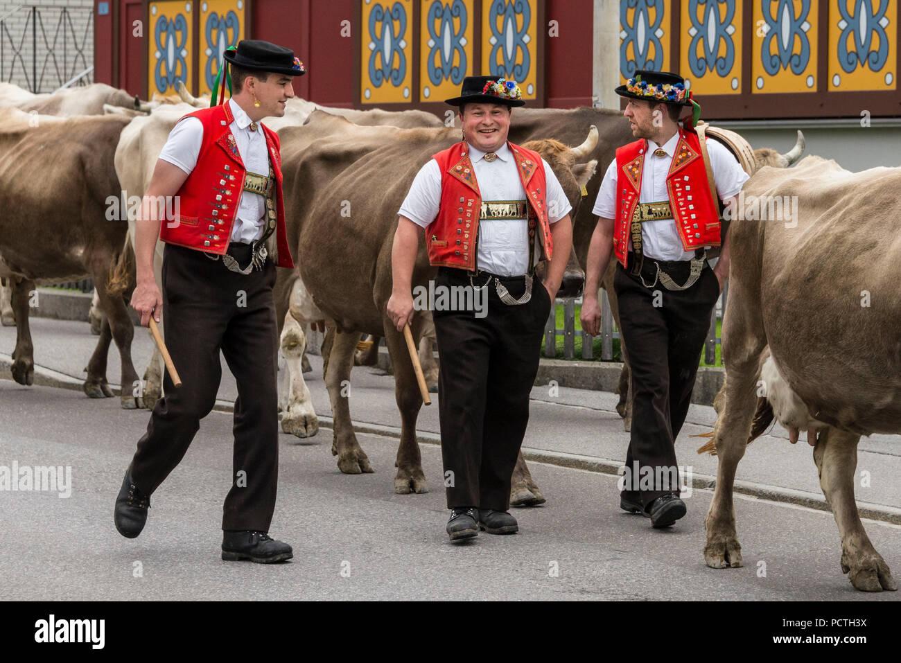 Herde Rinder- und Bergbauern während Alpabzug in Urnäsch, Appenzeller Land, Kanton Appenzell Ausserrhoden, Schweiz Stockbild