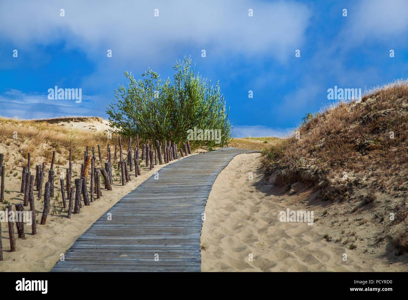 Dünen mit Holzsteg über Sand in der Nähe von Ostsee. Board weg über Sand Strand Dünen in Litauen. Stockfoto