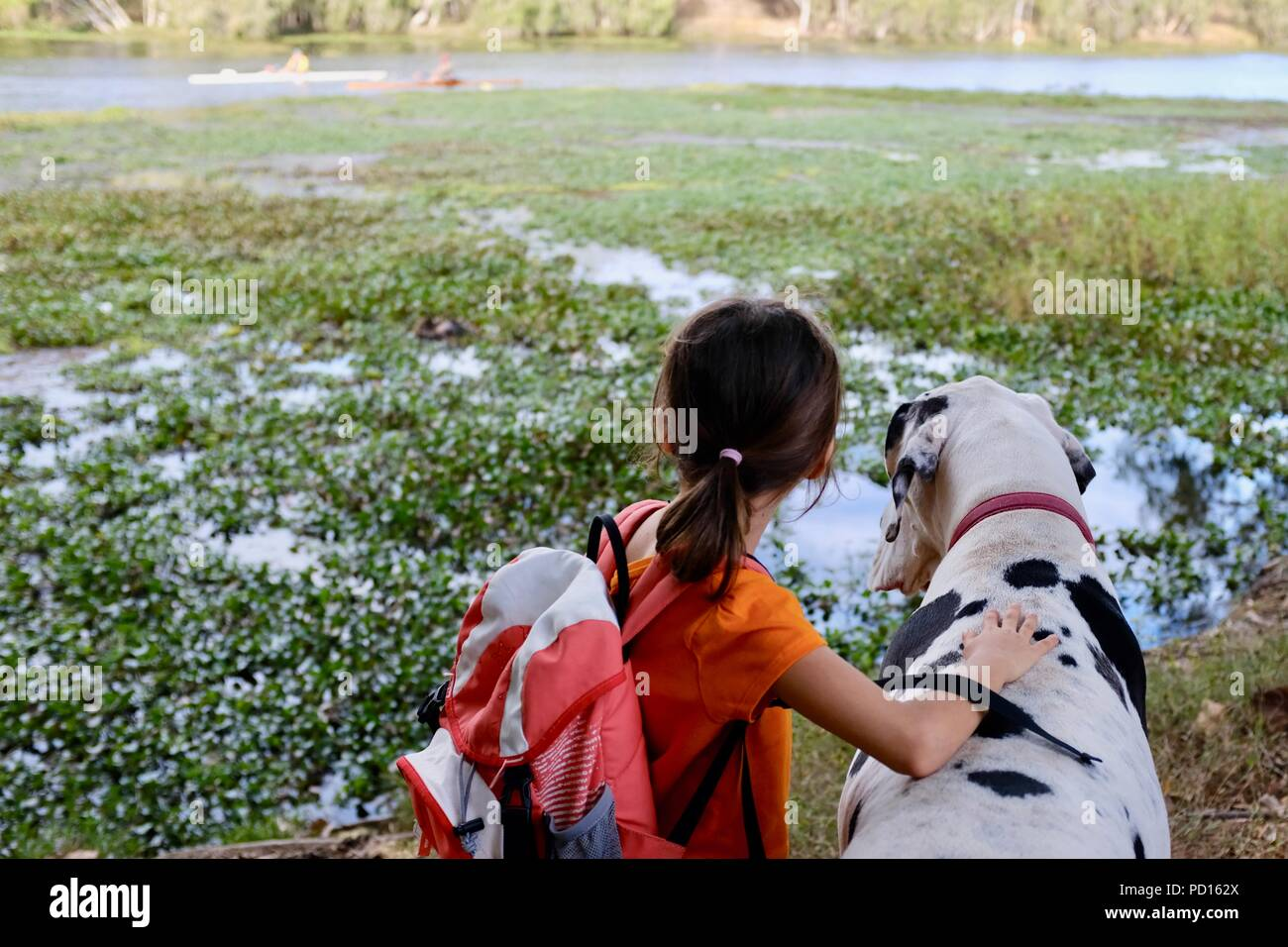 Ein junges Mädchen, Weiße und Schwarze Dogge Hund zusammen mit Blick auf einen Fluss, Booroona Wanderweg auf der Ross River, Rasmussen, QLD 4815, Australien Stockbild