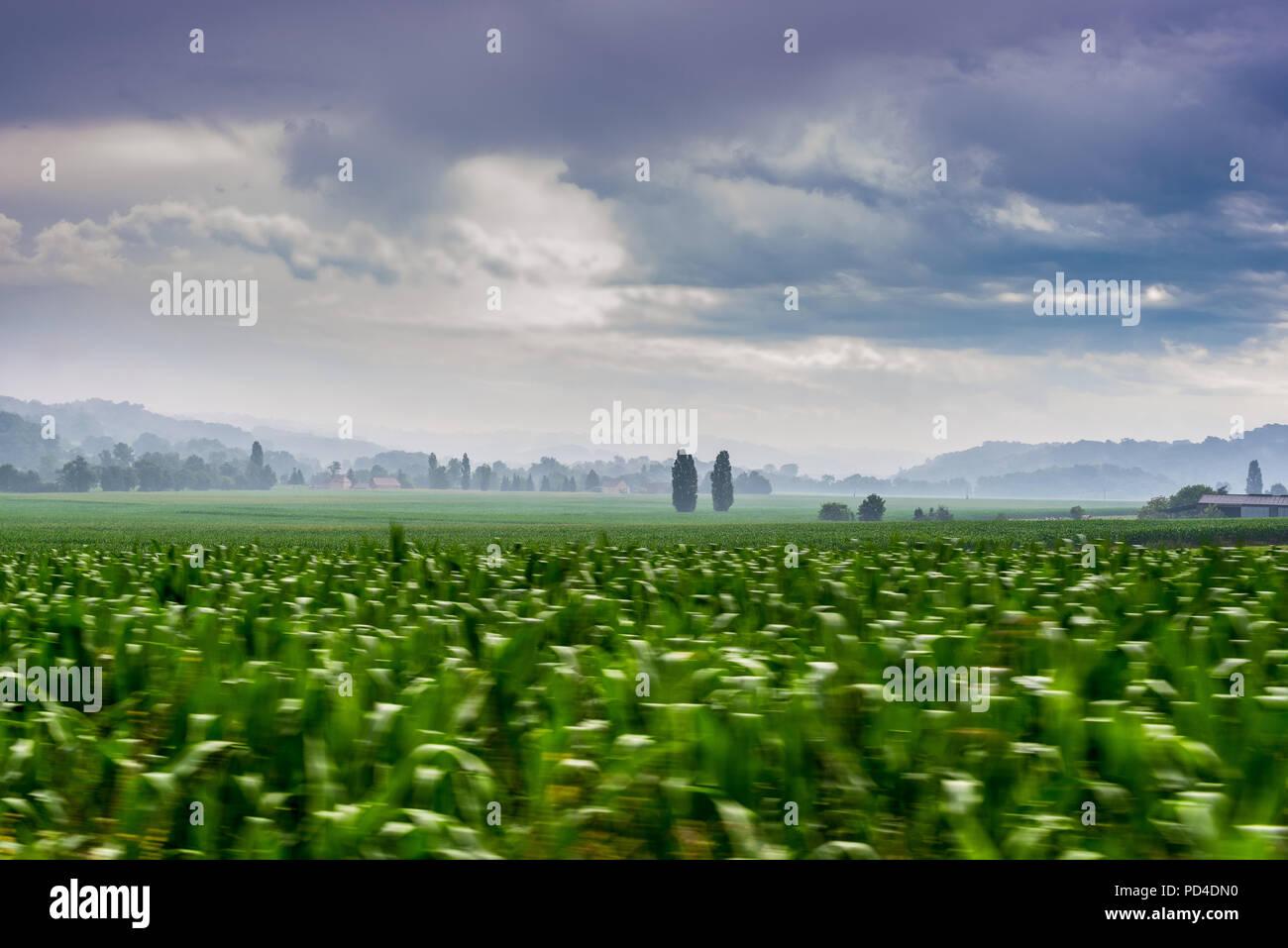 Schuß von Feldern in der Nähe von arzacq Frankreich genommen Stockfoto