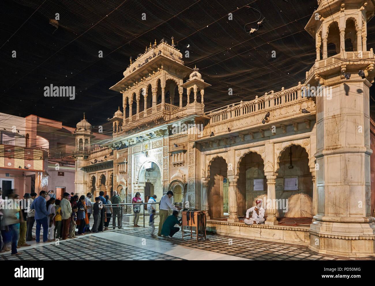 Tempel von Ratten, Karni Mata Tempel, Deshnoke, Rajasthan, Indien Stockbild