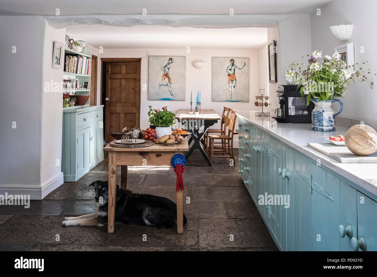 Zeitgenössisches Gefühl Land Küche mit silestone Oberflächen ...