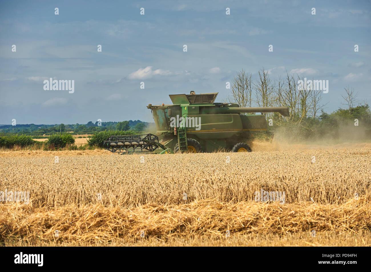 John Deere Mähdrescher schneiden Weizen in der East Riding von Yorkshire, England, UK, GB. Stockfoto