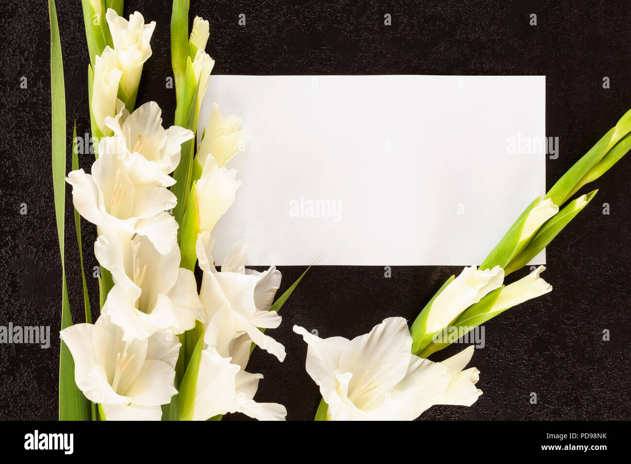 57f62dfc6ae04e Obituary Notice Stockfotos & Obituary Notice Bilder - Alamy