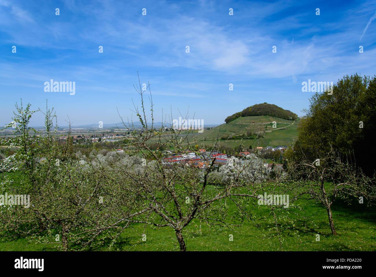 Grüne Wiesen, blauer Himmel Stockbild