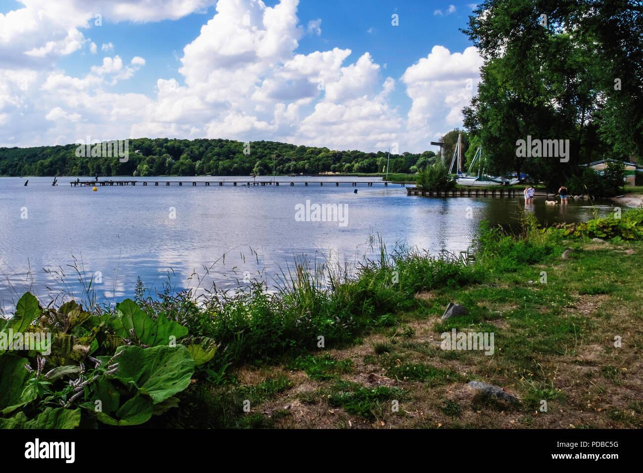 Tollensee See, beliebter Badeplatz & Urlaubsziel an Neubrandeburg, Mecklenburgische Seenplatte, Deutschland Stockbild