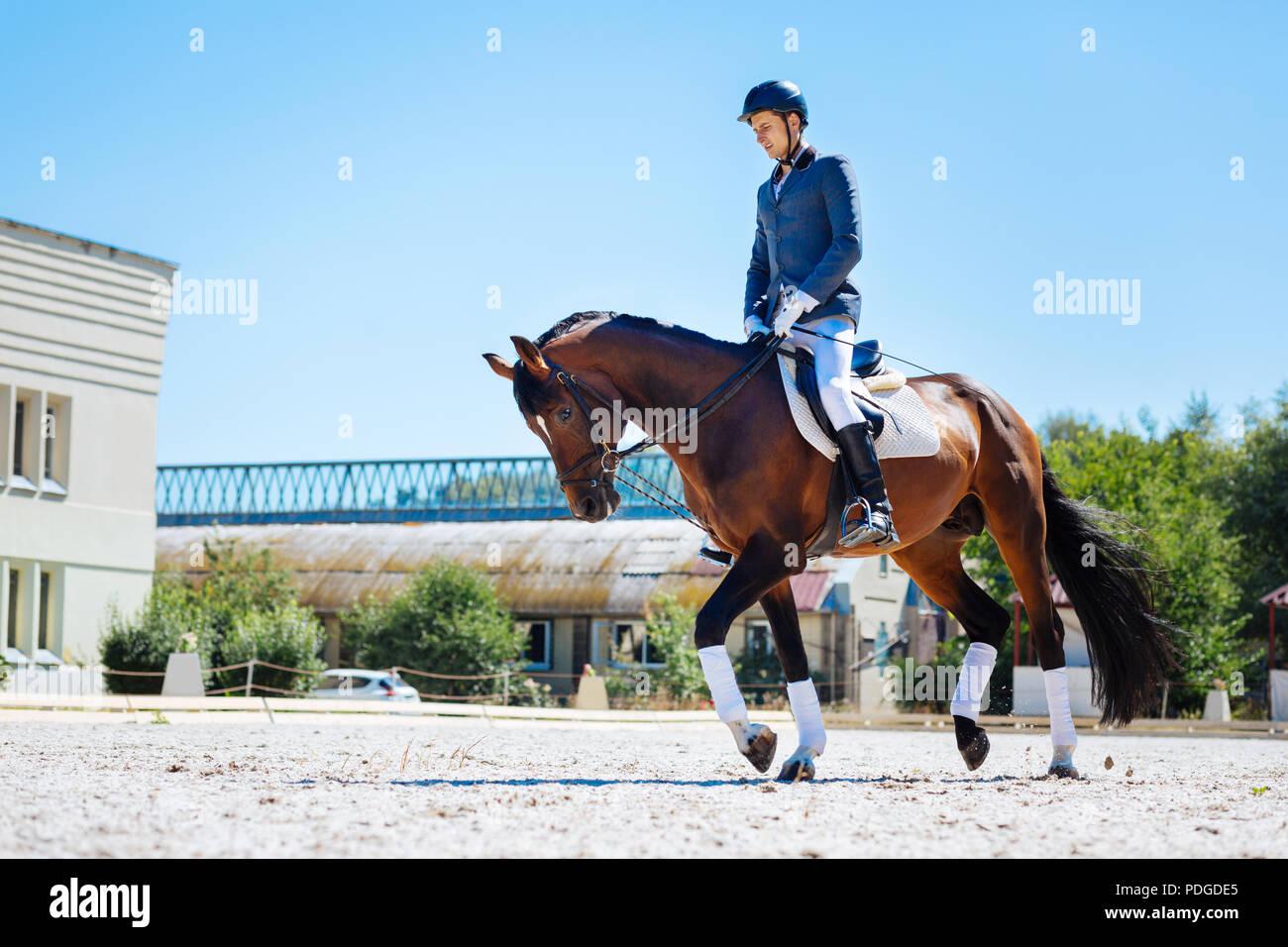 Pferd Mann mit Helm und Reiten suchen Stiefel sehr müde Stockbild