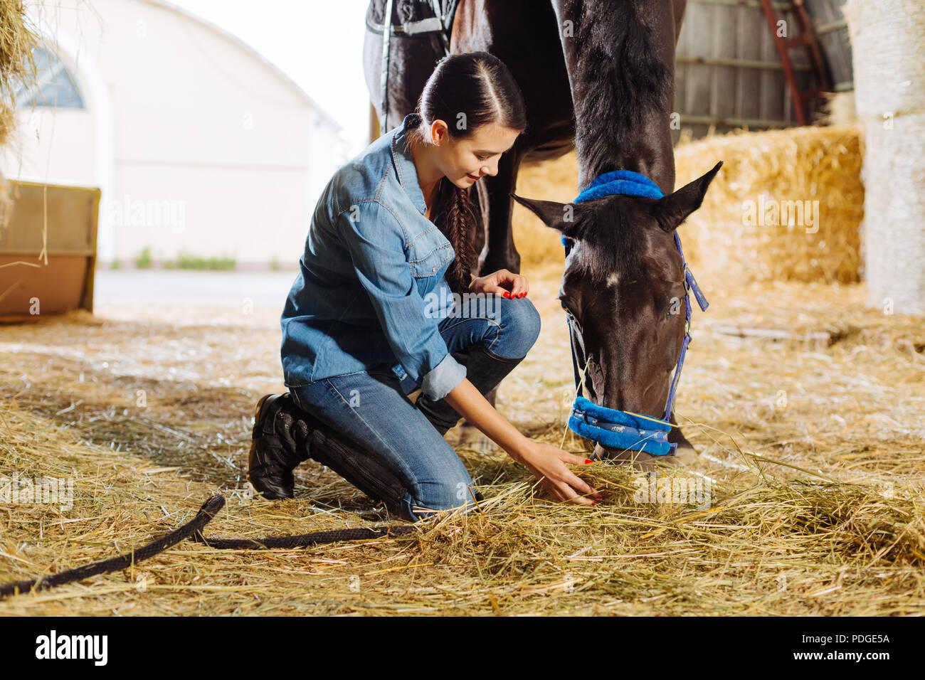 Schöne Reiterin Fütterung braunes Pferd mit etwas Stroh Stockbild