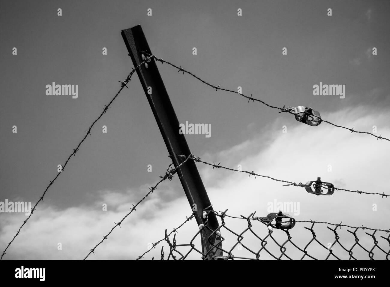 Stacheldraht und Spanner, Barjols, Var, Frankreich Stockfoto
