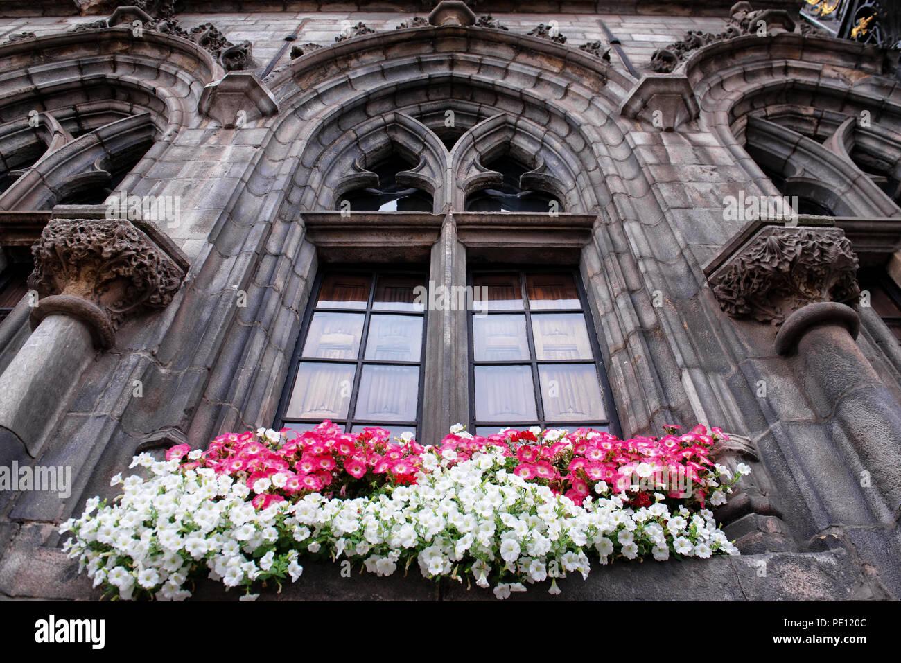 Blumen Von Petunia Dekorieren Ein Gotisches Fenster Des Rathauses In
