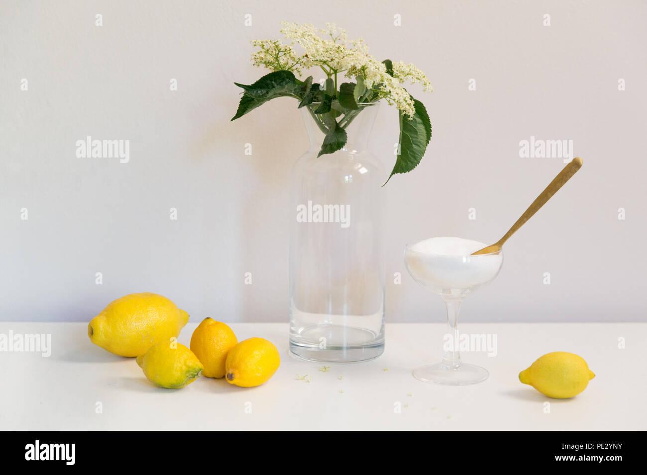 Die Bestandteile von Holunderblüten herzlichen (Wein, Sirup, Sekt, Champagner, Sekt) - Zitronen, Zucker und Elderflowers Stockbild